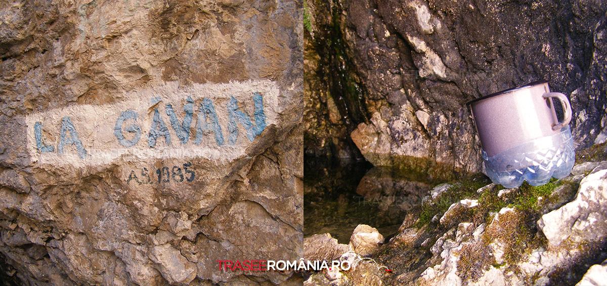 Izvorul La Gavan din Piatra Craiului