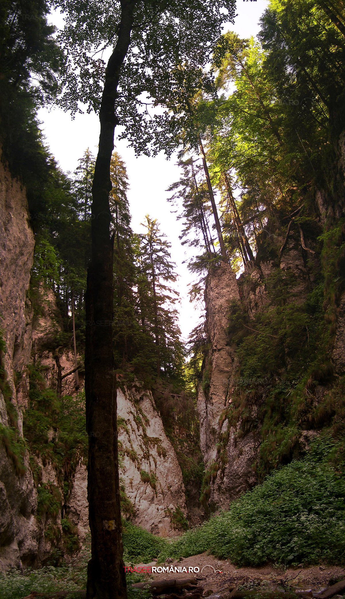 Canionul Sapte Scari Brasov