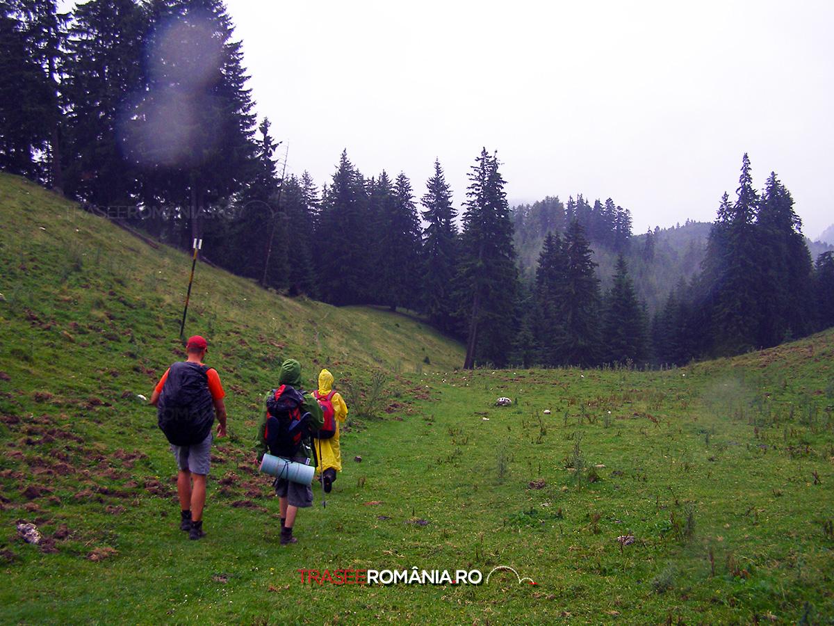 Zi ploioasa la munte dupa Furtuna din Creasta Pietrei Craiului