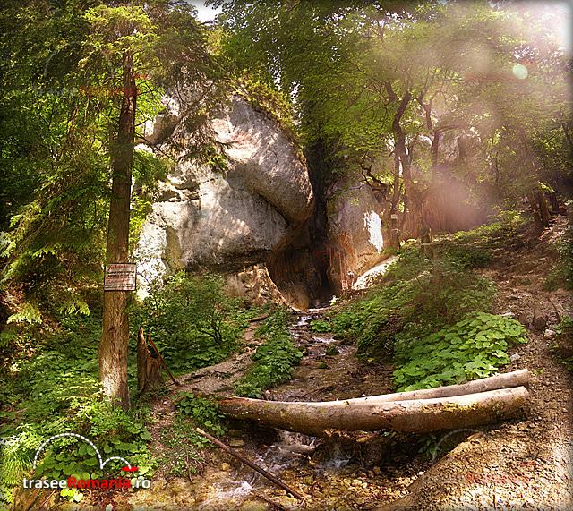 Canionul Sapte Scari - Muntii Piatra Mare