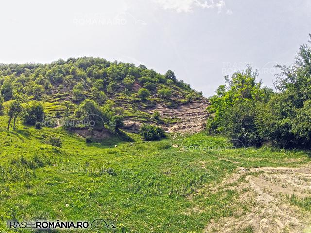 Geoparcul Valea Dinozaurilor Hateg - Situri cu fosile de dinozauri