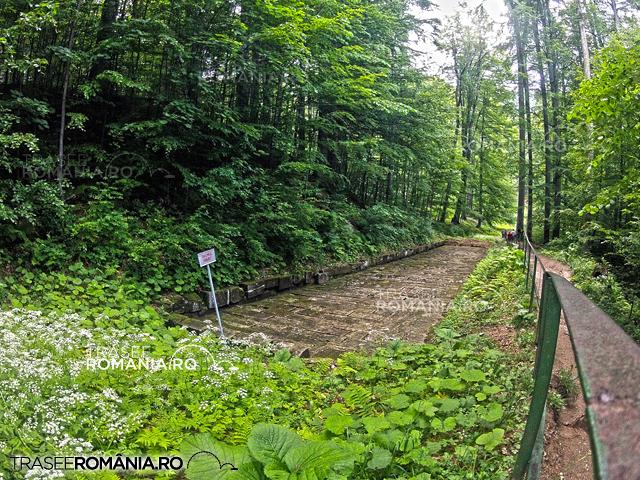 Sarmizegetusa Regia - Drumul Pavat