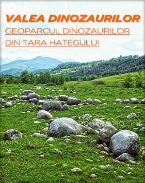 Situri cu fosile de dinozauri - Geoparcul Valea Dinozaurilor Hateg slide