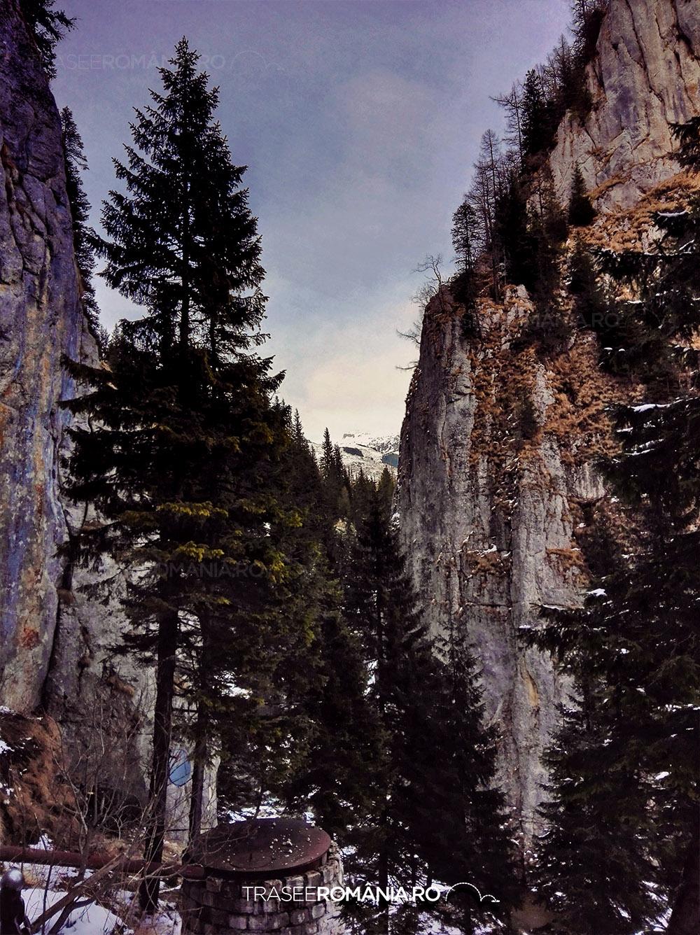 Valea Ialomitei Pestera