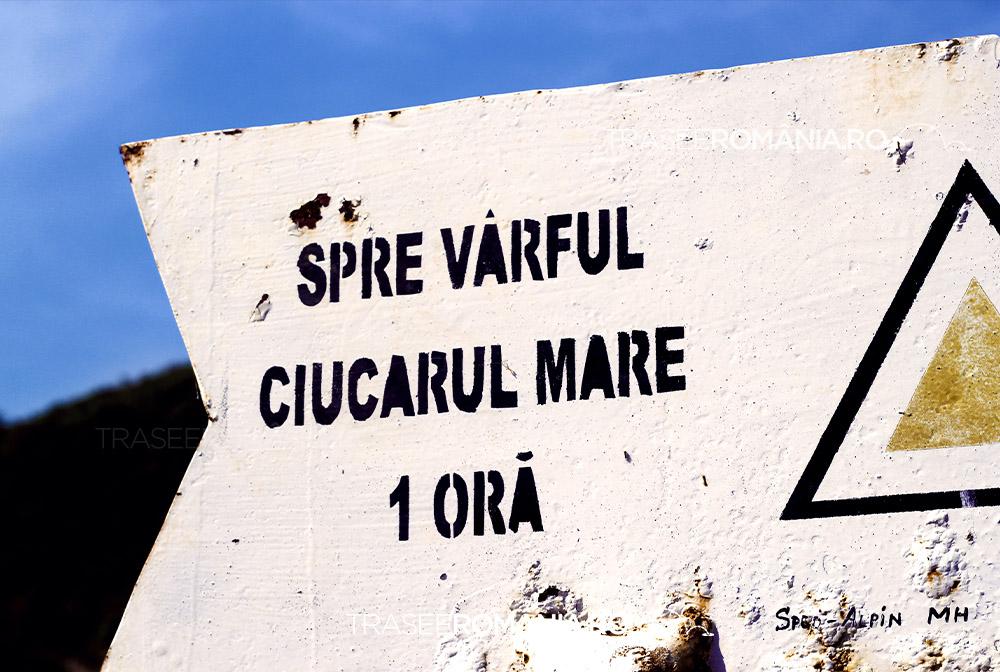 Marcaj Varful Ciucaru Mare