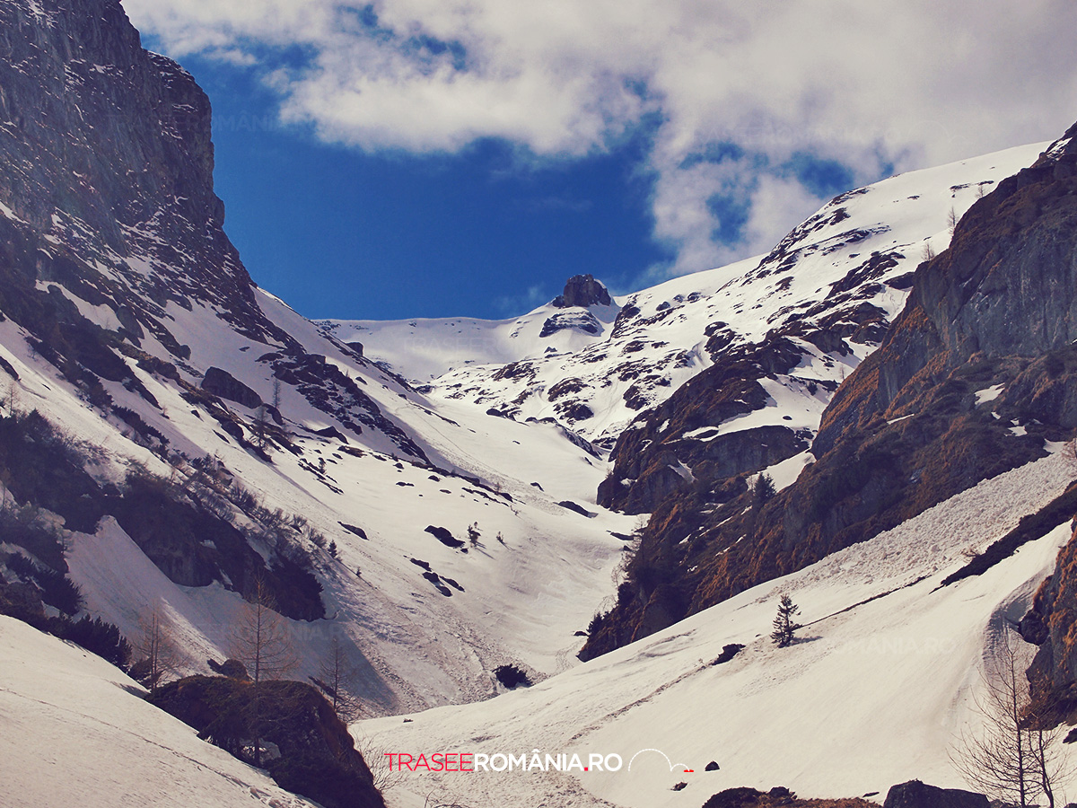 Coborare iarna pe Valea Cerbului din Muntii Bucegi