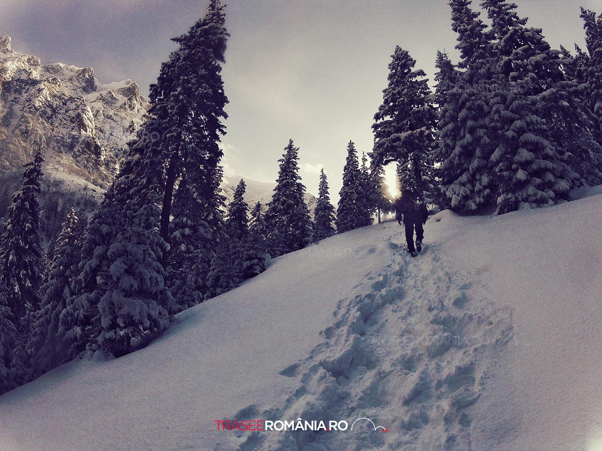 Drumetie in Muntii Bucegi iarna
