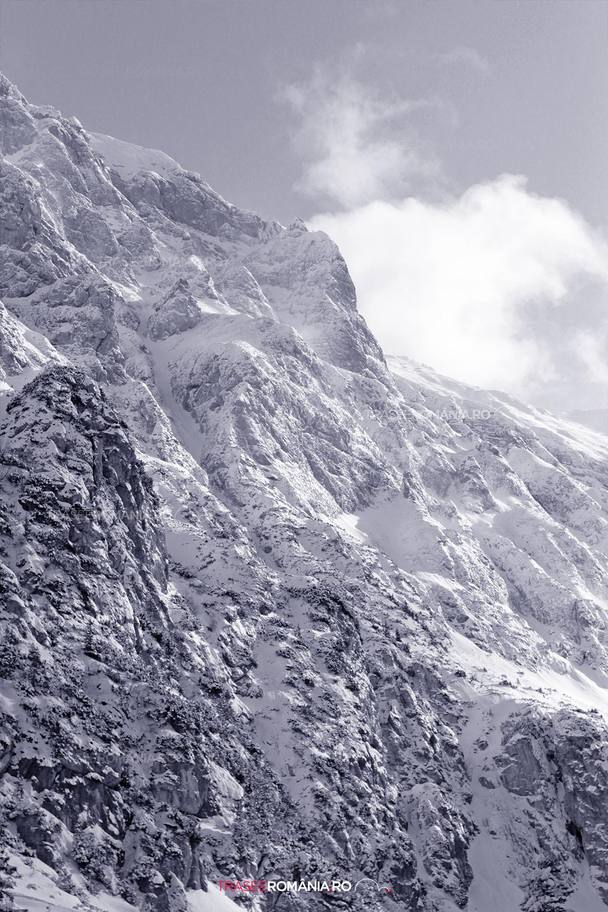 Muntele Bucsoiul Mare iarna