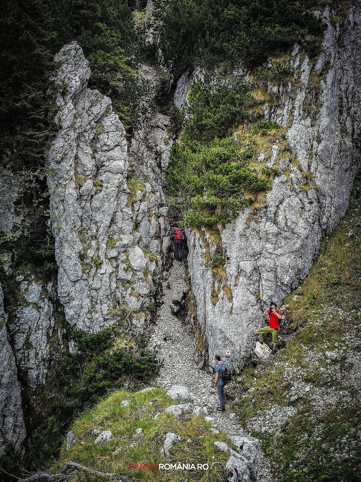 Traseu Piatra Craiului Refugiul Sperantelor - Brâul Ciorânga Mare
