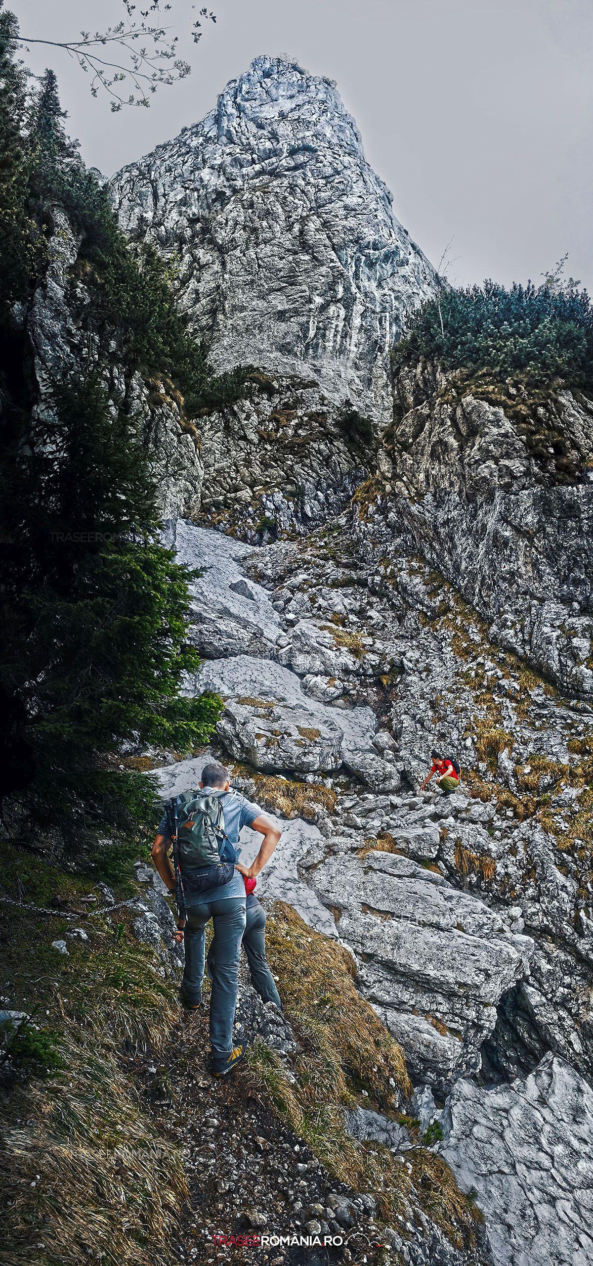 Drumetie Piatra Craiului Izvorul Capitan Orlovsky - Refugiul Sperantelor - Brâul Ciorânga Mare - Varful Ascutit