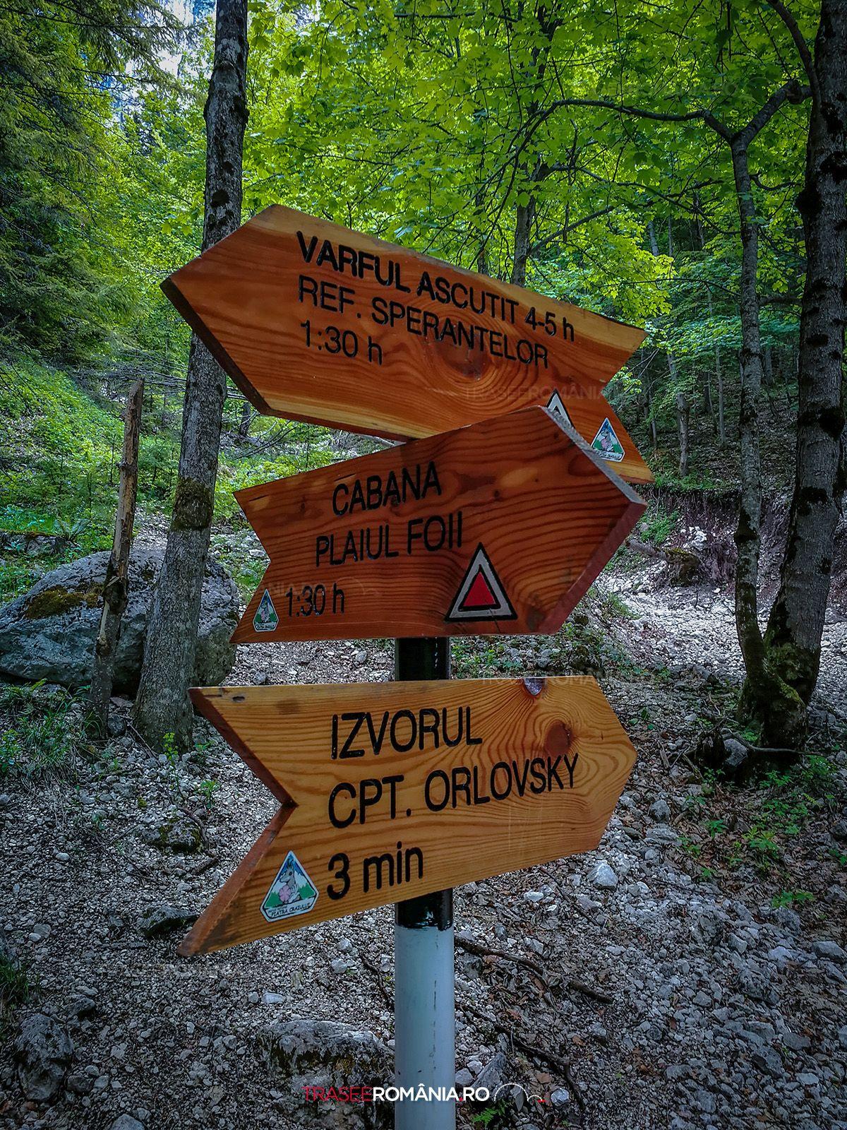 Drumetie in Piatra Craiului Izvorul Capitan Orlovsky - Refugiul Sperantelor - Brâul Ciorânga Mare - Varful Ascutit
