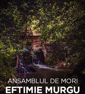 Eftimie Murgu Ansamblul de mori de pe Valea Rudariei